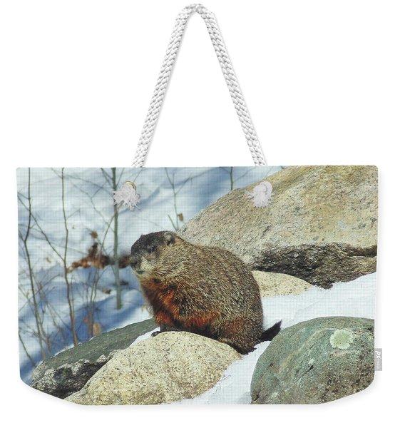 Winter Groundhog Weekender Tote Bag