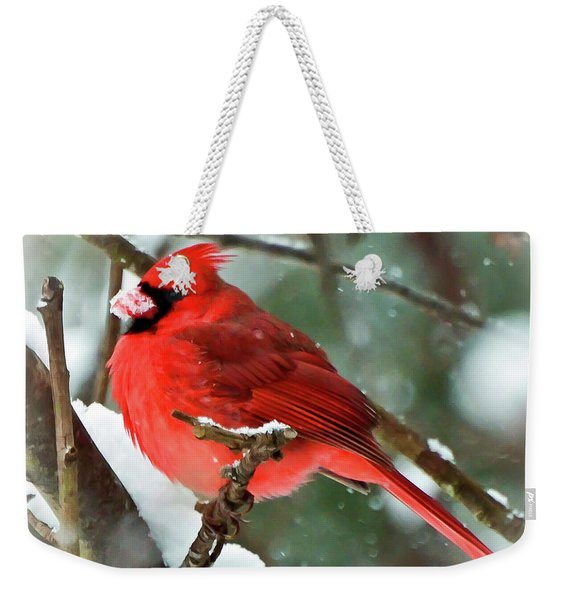 Winter Red Bird - Male Northern Cardinal With A Snow Beak Weekender Tote Bag
