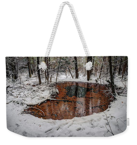 Winter Reflections Weekender Tote Bag