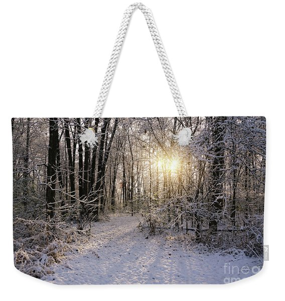 Winter Woods Sunlight Weekender Tote Bag