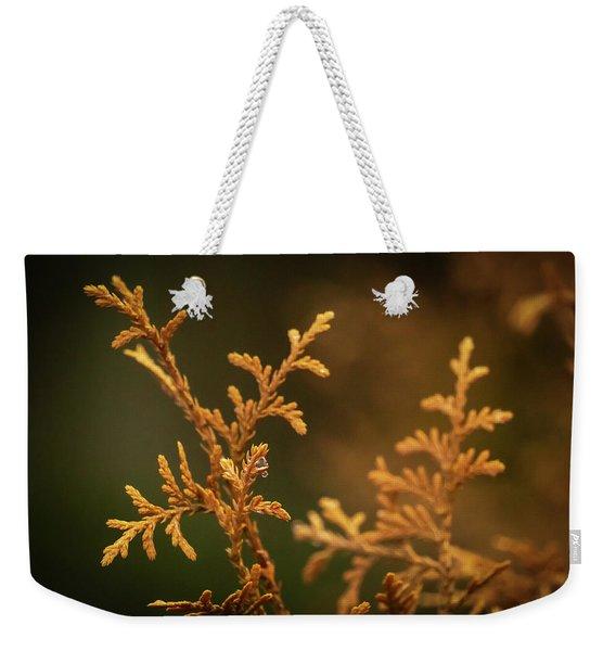 Winter's Hedges Weekender Tote Bag