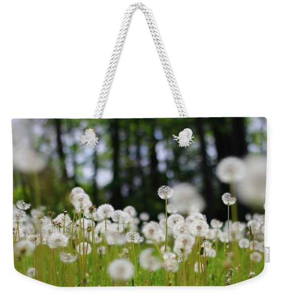 Wishes And Dreams Weekender Tote Bag