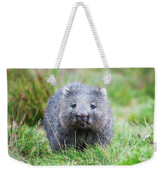 Wombat Weekender Tote Bag