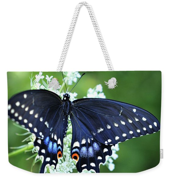 Weekender Tote Bag featuring the photograph Wonder by Michelle Wermuth