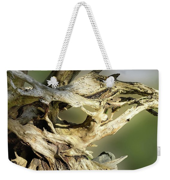 Weekender Tote Bag featuring the photograph Wood Log In Nature No.14 by Juan Contreras