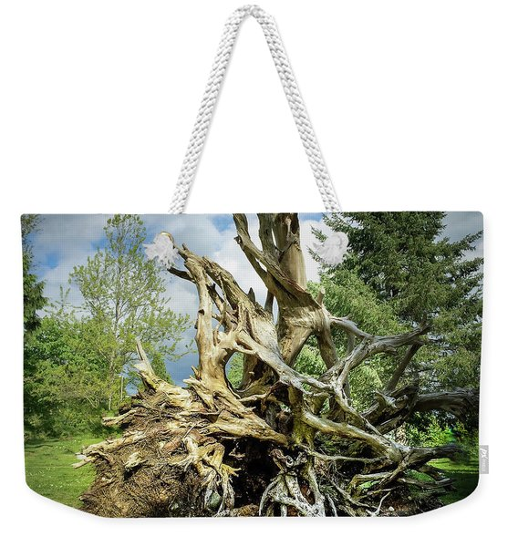 Weekender Tote Bag featuring the photograph Wood Log In Nature No.6  by Juan Contreras