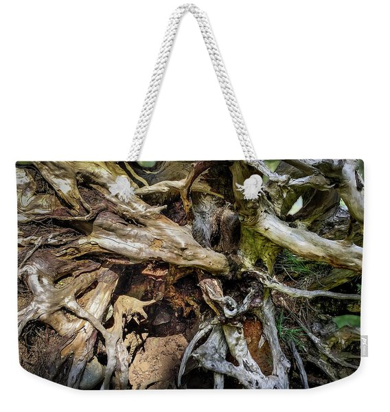 Weekender Tote Bag featuring the photograph Wood Log In Nature No.8 by Juan Contreras