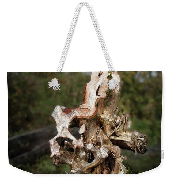 Weekender Tote Bag featuring the photograph Wood Logs In Nature No. 1 by Juan Contreras