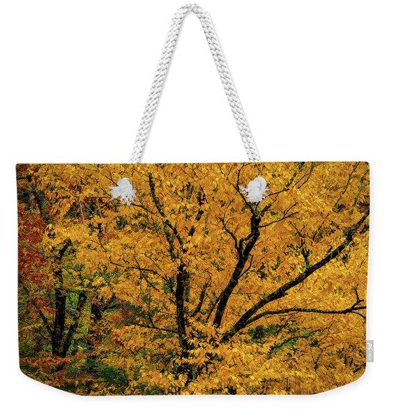 Yellow Tree Leaf Brilliance  Weekender Tote Bag