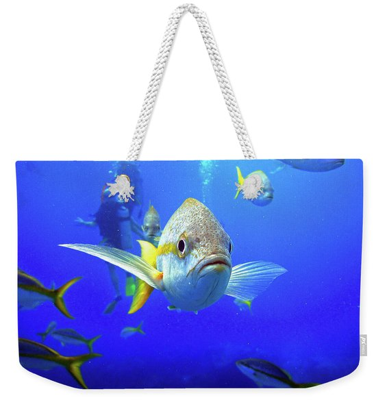 Yellowtails Weekender Tote Bag