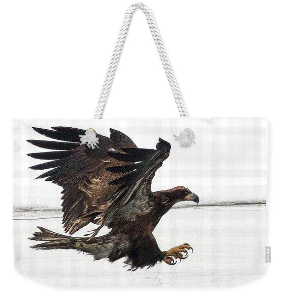 Young Bald Eagle Weekender Tote Bag