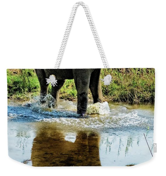 Young Elephant Playing In A Puddle Weekender Tote Bag