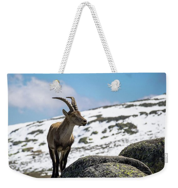 Young Ibex Weekender Tote Bag