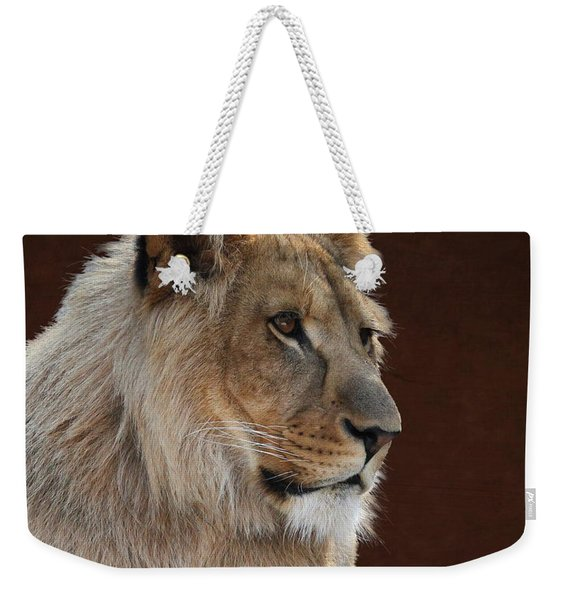 Young Male Lion Portrait Weekender Tote Bag