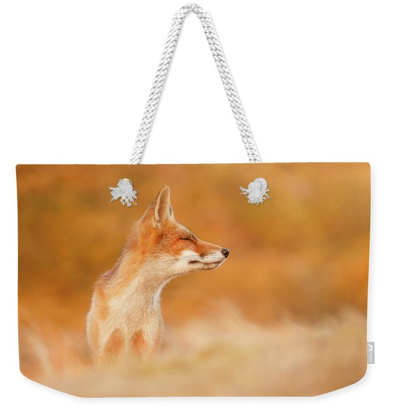 Zen Fox Series - Sunshine On A Cloudy Day Weekender Tote Bag