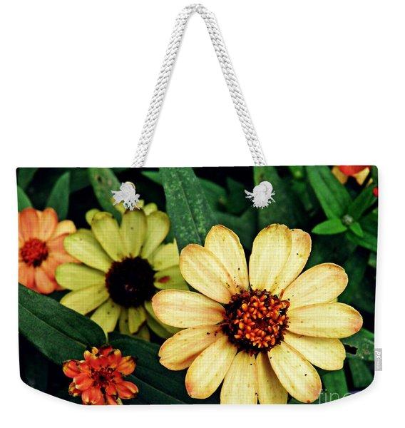 Zinnias In Autumn Weekender Tote Bag