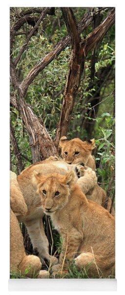 Masai Mara Lion Cubs Yoga Mat