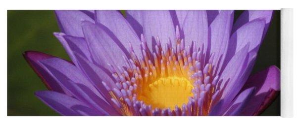 Purple Water Lily Yoga Mat