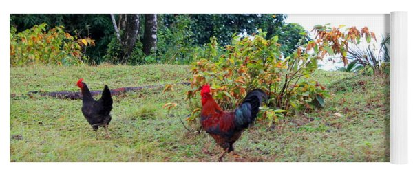 Rooster And Chicken In Jamaica Yoga Mat