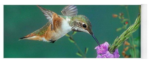 Allens Hummingbird Yoga Mat