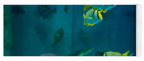 Aquarium Fish Yoga Mat