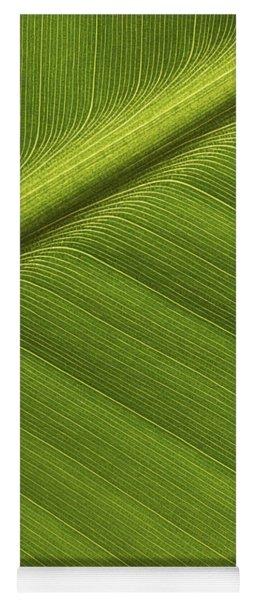 Banana Leaf Showing Rib Netherlands Yoga Mat