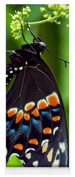 Black Swollowtail  Yoga Mat