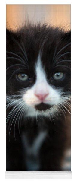 Black And White Kitten Yoga Mat