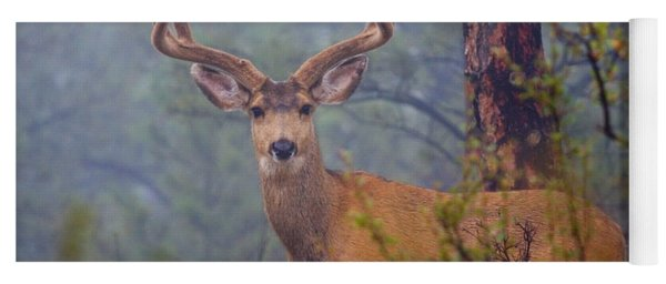 Buck Deer In A Mystical Foggy Forest Scene Yoga Mat