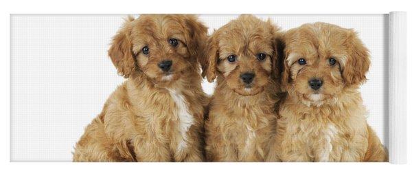 Cockapoo Puppy Dogs Yoga Mat