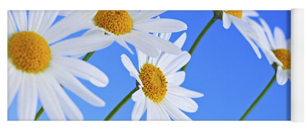 Daisy Flowers On Blue Background Yoga Mat