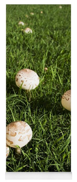 Field Of Mushrooms Yoga Mat