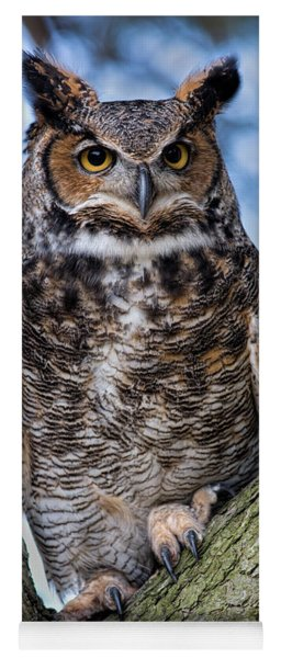 Great Horned Owl Yoga Mat
