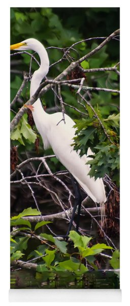 Great White Egret Yoga Mat