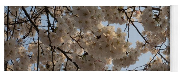 Low Angle View Of Cherry Blossom Yoga Mat