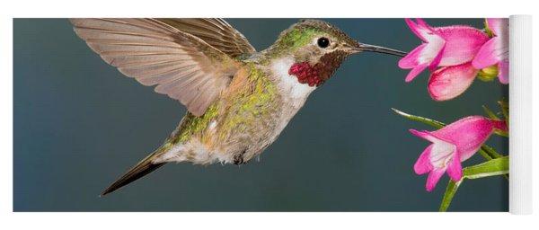 Male Broad-tailed Hummingbird Yoga Mat