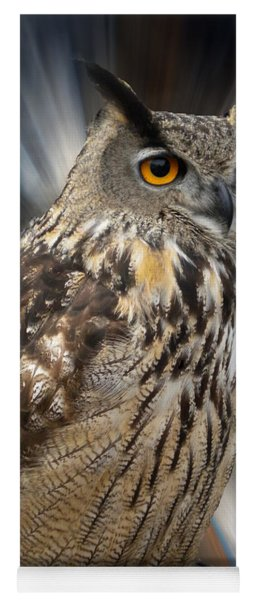Yoga Mat featuring the photograph Owl Alba Spain  by Colette V Hera  Guggenheim