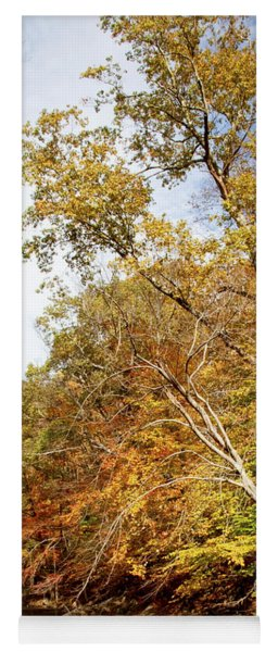 Pennsylvania Stream In Autumn Yoga Mat