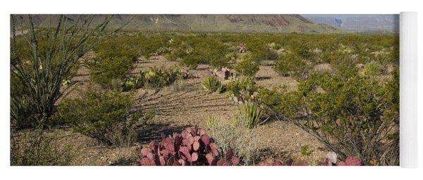Prickly Pear In Chihuahuan Desert, Texas Yoga Mat
