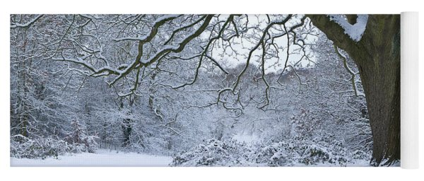 Snow Covered Trees In A Park, Hampstead Yoga Mat