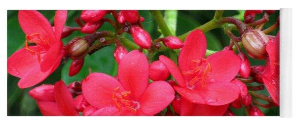 Lovely Spring Flowers Yoga Mat