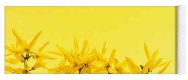 Spring Yellow Forsythia  Yoga Mat