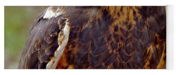 Swainson's Hawk Yoga Mat