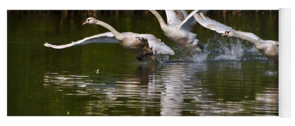 Swan Take-off Yoga Mat