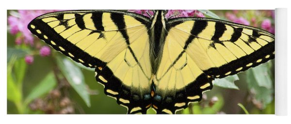 Tiger Swallowtail Butterfly On Milkweed Flowers Yoga Mat