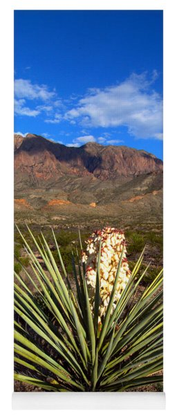Torrey Yucca In The Chisos Mountains Yoga Mat