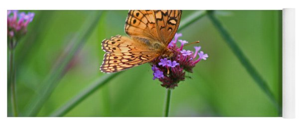 Variegated Fritillary Butterfly In Field Yoga Mat