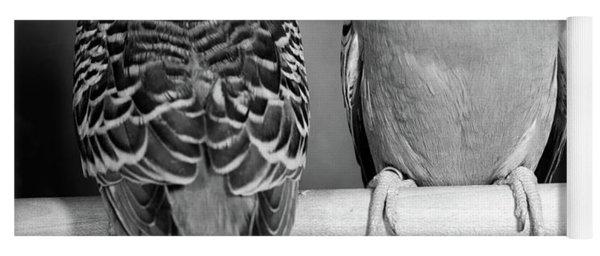 1960s Pair Of Parakeets Perched Yoga Mat