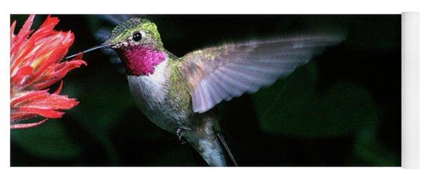 1980s Broad-tailed Hummingbird Yoga Mat