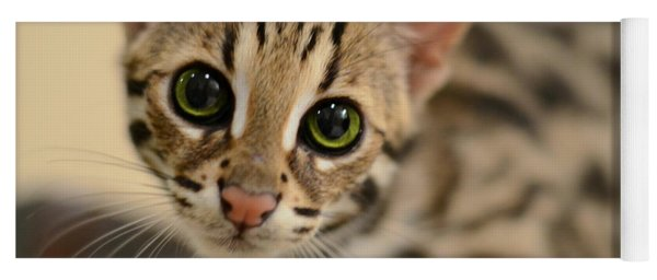 Asian Leopard Cub Yoga Mat